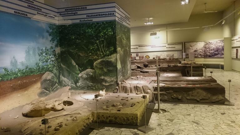 Museo Pigorini  24/04/2017